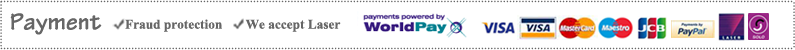 Payments powered by world pay