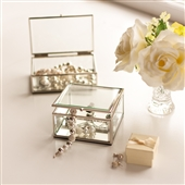 Set of Two Clear Glass Storage Boxes